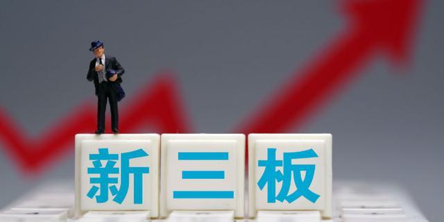 国内新三板公开发行的股票的定价方式